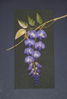 Wisteria - a gorgeous kit from Alison Cole Embroidery (I'm itching to buy it!)