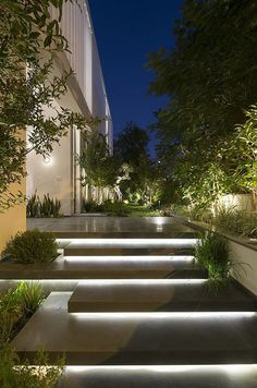 Illuminated entrance stairs … – house entrance / front garden – … – The World