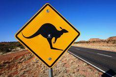 incor goes to Australia con mattia miraglio