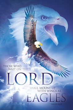 Resting in Him: Those who wait upon the Lord. Christian art poster with bible verses. http://www.lifeposters.org