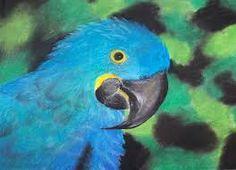 Znalezione obrazy dla zapytania prace wykonane suchymi pastelami