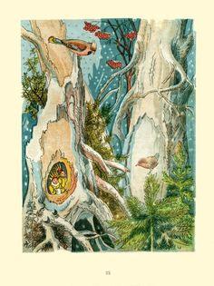 "I. Kuznetsova, illustrator: ""Zoe and Zoe""  1948, by V.Bianki"