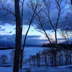 坐忘林からの羊蹄山麓を臨む。 #北海道 #陰翳礼讃 #japan #静寂 #beautiful #calm #hokkaido #youteimountain #zaborin #niceview #日本 #wa #和洋 #snow #雪景色 #白樺 #自然 #moon #満月 #fullmoon #夕焼け #sunset #nightsky #倶知安 #hotel #nature @zaborin.ryokan | zaborin.com