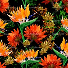 Тропические листья и цветы - Векторная картинка: 48942593