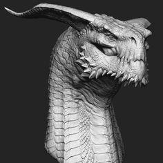 Dragon Bust on Behance