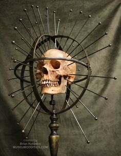 Craniometer. DIY idea - embroidery hoops, skewers, and a Dollar Store skull...