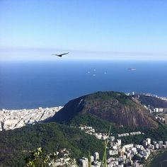 De asas abertas sobre a Guanabara. #Rio #Brasil
