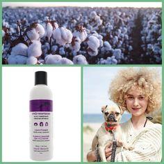 """Zulufița Shop on Instagram: """"Cauți un balsam care să-ți lase părul hidratat? Avem o veste bună! Balsamul pentru păr creț de la Nappy Queen este acum la reducere! 💕 🌱…"""" Curly Girl, Queen, Instagram, Curly Hair"""