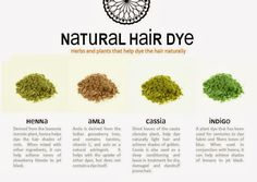 Natural Hair Dye -- Brief info about four different plant powders used to acheive natural hair dye colors. Henna, Amla, Cassia, and Indigo.