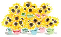Caitlin McGauley, watercolor, sunflowers