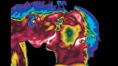 fotografía térmica de un beso
