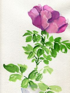 Longing Watercolor and Gouache On Cotton Paper 2015 Wild Rose Watercolor Flowers, Watercolor Art, Drawing Practice, Gouache, Diy Art, Garden Art, Beautiful Flowers, Plant Leaves, Drawings