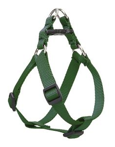 Lupine 3/4' Green Step In Dog Harness -- Remarkable product available now. : Harnesses for dogs