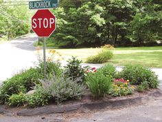 Going to Hell (Strips) Story and photo by Colleen Plimpton/Life@Home They go by various intriguing names: inferno band, verge, curbside landscape, tree lawn, devil belt. But most folks just call th...