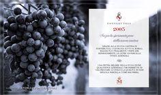 Il 2005 segna una svolta nel processo qualitativo del progetto Castello di Fonterutoli. #fonterutoli #marchesimazzei #wine