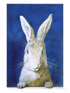 Magazine Cover Depicting a Rabbit by Frank S. Guild Giclee Print at AllPosters.com