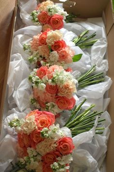 BRIDES BOUQUET: Miss Piggy roses, carnations and stocks (can replaced with Snapdragon) - peach, white, coral Coral Wedding Flowers, Coral Roses, Bridal Flowers, Floral Wedding, Peach Wedding Bouquets, Orange Weddings, Wedding Colors, Wedding Dresses, Peach Bouquet