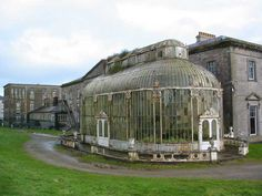 Victorian Conservatory at Ballyfin Hotel in Ireland, before it's restoration.
