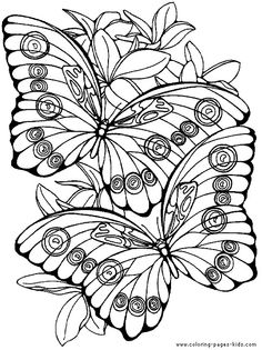 Two Butterflies with flowers color page. Animal coloring pages. Coloring pages for kids. Thousands of free printable coloring pages for kids! Cool Coloring Pages, Animal Coloring Pages, Coloring For Kids, Printable Coloring Pages, Adult Coloring Pages, Coloring Sheets, Coloring Books, Butterfly Coloring Page, Mandala Coloring