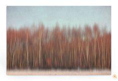 """""""Wood abstract"""" von Iris Lehnhardt"""