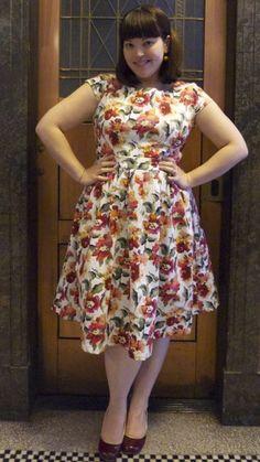 Frocks & Frou Frou pretty dress! (Ginger Tree)