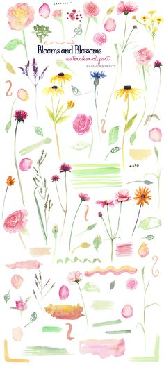 Watercolor Clip Art - Floral by Maria B. Paints on @creativemarket