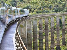 Northern Explorer - Viagem de Trem pela Nova Zelândia