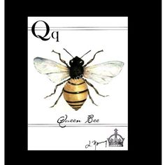 ≗ The Bee's Reverie ≗ Queen Bee on canvas by lyoungstudio on Etsy
