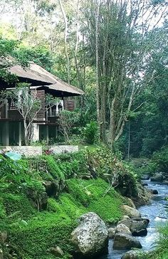 House in Jungle, Maya Ubud Resort and Spa