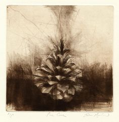 jake muirhead, drypoint, date The atmosphere of etching is lonely and the etching itself uses close to giver marks to give the illusion of depth. Gin Set, Baby Laden, Art Sketches, Art Drawings, Intaglio Printmaking, Drypoint Etching, Observational Drawing, A Level Art, Natural Forms