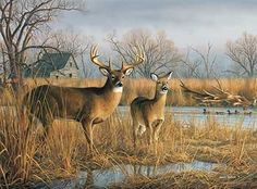 Our Side of the River-Deer by Jim Hautman  |  Wild Wings  Hautman brothers among top art licensors