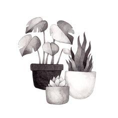 Inktober, Day 17. Olga Svart Illustration