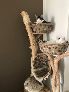 weitere verkaufte Bäume - Naturholzbäume für Katzen Cat Tree House, Cat House Diy, Diy Cat Tree, Cat Towers, Cat Stands, Cat Shelves, Cat Room, Cat Condo, Pet Furniture