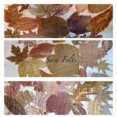 Sara Felts - Leaf prints on Watercolor paper.