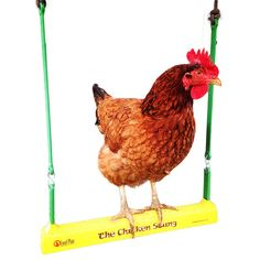 * Got chickens or other cooped up fowl? Get The Chicken Swing! * The world's #1 chicken toy! * Reduces coop boredom and brings smiles to the people that care for chicken and fowl * Not just a hanging