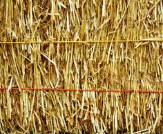 Tips on using hay instead of straw.