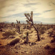 Lakeside Casino Amp Rv Resort At Pahrump Nevada I Spent