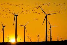 Propriétaire ayant accepté des éoliennes sur votre terrain y avez-vous pensé ? Avez-vous vérifié que l'installateur a pris une garantie bancaire ? Comme pour un achat en VEFA – vente sur plan – ainsi en cas de défaillance de l'installateur, faillite par...