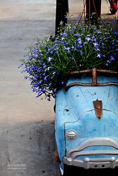❥ old car with flowers