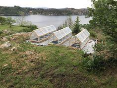 Mini greenhouse, gardening,