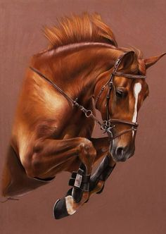 This artwork was created by Marion Tubiana. So talented ! Horse Drawings, Animal Drawings, Horse Artwork, Horse Portrait, Pencil Portrait, Animal Paintings, Horse Paintings, Pastel Paintings, Pastel Art