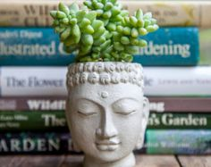 Buddha Head Planter BY BROOKLYN GLOBAL - small cement pot - Buddha Head Planter #2 #planter #decor #home #handmade