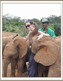 Elephant Orphanage, Nairobi, Kenya