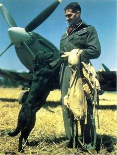 Johnny Johnson (Wing Commander James E Johnson) The top RAF fighter ace shooting down 38 German planes. Seen here with his pet Labrador Sally - Battle of Britain 1940
