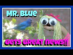 HAND PUPPET SHOW FOR CHILDREN - MR. BLUE BIRD GETS GREAT NEWS! - Blue Bi... Puppet Show For Kids, Animal Facts, Hand Puppets, Funny Kids, Blue Bird, Jokes, News, Children, Music