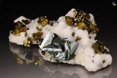 A fantastic combination of twinned Tetrahedrite and golden Chalcopyrite beautifully set on snow white Calcite base. The well isolated clusters of crystals contrast by one tremendous manner on the white background. Tetrahedrites are tetrahedral crystals up to 12mm with perfection in the habit. Black colored very strongly lustrous and light reflective with striations. The most amazing aspect is the twining in pairs of Tetrahedrites with geometrical perfection. Chalcopyrites are with strong…