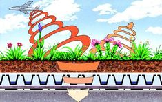 6 Ecological Benefits of Green Roofs