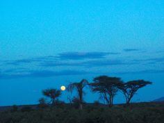 African full moon. Mount Kenya, Good Night Moon, Full Moon, Discovery, Tourism, Exotic, Beautiful Places, African, Sunset