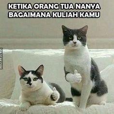 35.8rb Suka, 195 Komentar - meme.comic.indonesia lucuan (@gambar.lucu) di Instagram