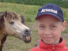 Funniest Animal Photobombs | Funny Horse Photobombs (23 pics)